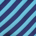 Turquoise/Navy